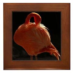 Flamingo Beauty Framed Tile