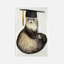 Ferret Graduation Rectangle Magnet