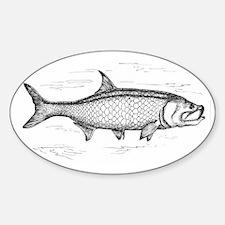 Tarpon Sticker (Oval)