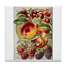 4 Farliest Fruits Tile Coaster