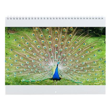 Cute Purple Peacock Wall Calendar