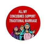 All My Concubines 3.5