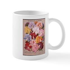 Maule's Mug