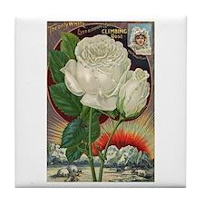 Climbing Rose Tile Coaster