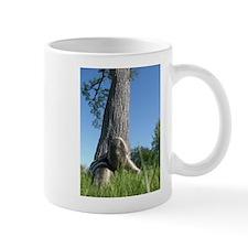 Sssssnake in the Grass 6 Mug