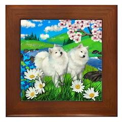 SAMOYED DOGS SPRING RIVER Framed Tile