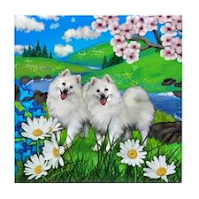 AMERICAN ESKIMO DOGS SPRING RIVER Tile Coaster