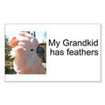 MC Grandkid Feathers Rectangle Sticker