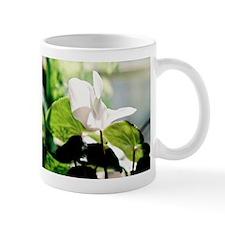 Cyclamin - Mug