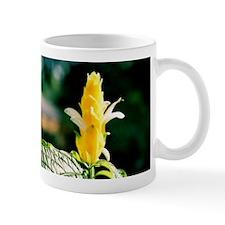 Candlestick Flower - Mug