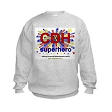 CDH Superhero Stars Logo for Boys Sweatshirt