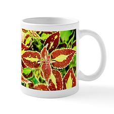 Coleus - Mug