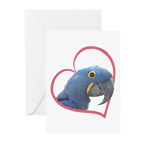 Hyacinth Macaw Heartline Greeting Cards (Pk of 20)