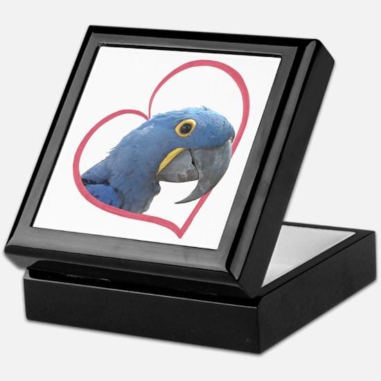 Hyacinth Macaw Heartline Keepsake Box