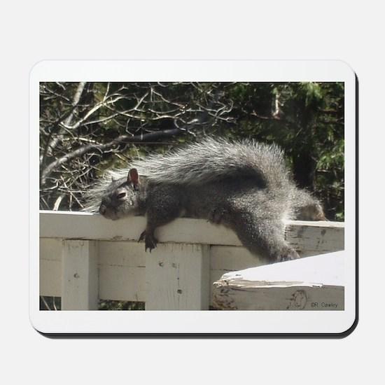 Bum Squirrel Mousepad