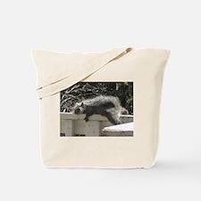 Bum Squirrel Tote Bag