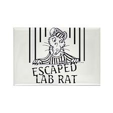 Escaped Lab Rat Rectangle Magnet