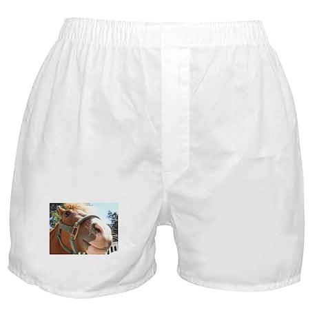Hiya Horse Boxer Shorts
