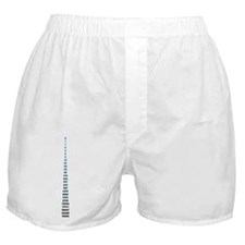 The Fibonacci Code Boxer Shorts