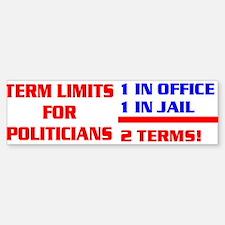 TERM LIMITS FOR POLITICIANS Sticker (Bumper)