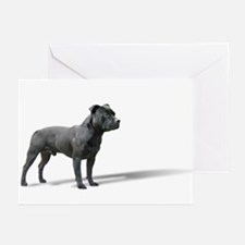 Standing Stafford Greeting Cards (Pk of 20)