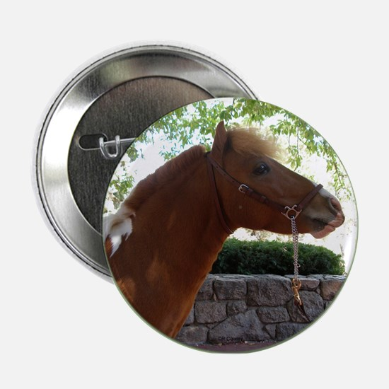 "Pinto Profile 2.25"" Button"