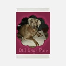 Old Dogs Rule-Hurr Rectangle Magnet