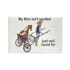 Mini Isn't Spoiled Rectangle Magnet (10 pack)