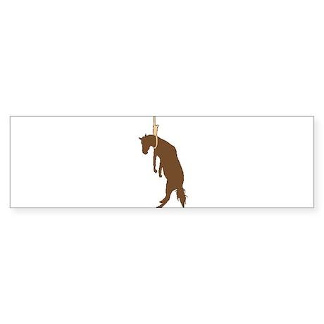 Hung like a horse Bumper Sticker