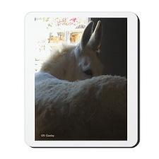 White Donkey Mousepad