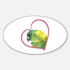 YN Amazon Heart Line Oval Decal