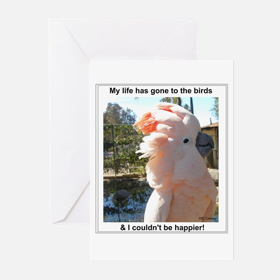 Gone To The Birds Greeting Cards (Pk of 10)