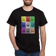 Got Shakespeare? Get Shakespe T-Shirt