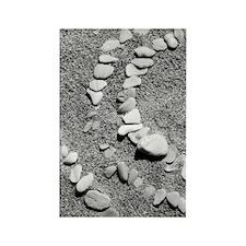 Espiritu Santo 96 Rectangle Magnet (10 pack)