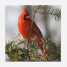 Cardinal Tile Coaster