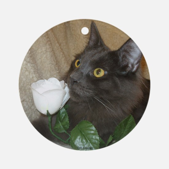 Rose Kitty 2 Ornament (Round)