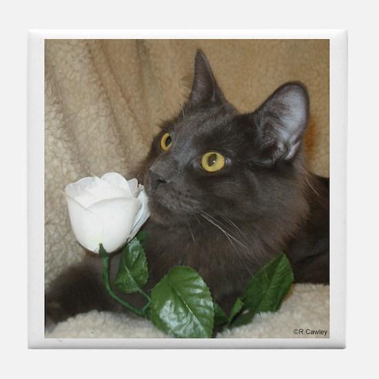 Rose Kitty 2 Tile Coaster