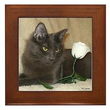 Rose Kitty1 Framed Tile