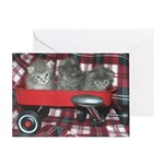 Wagonful of Kittens Greeting Card