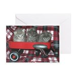 Wagonful of Kittens Greeting Cards (Pk of 10)