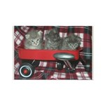 Wagonful of Kittens Rectangle Magnet
