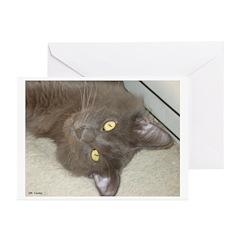 Hi Kitty Greeting Cards (Pk of 10)