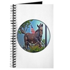 Misty of Chincoteague Journal