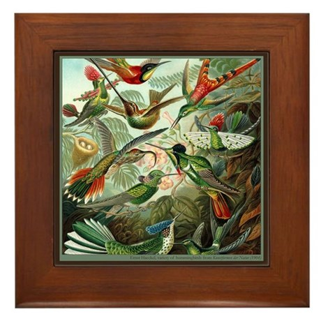 """""""Hummingbird Print"""" Framed Tile"""