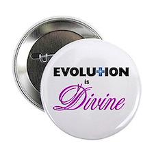 Evolution is Divine Button