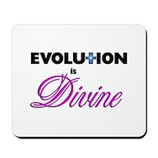 Evolution is Divine Mousepad