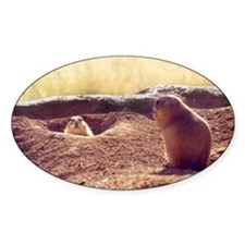 Meeting Prairie Dogs Oval Decal
