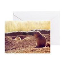 Meeting Prairie Dogs Greeting Cards (Pk of 10)