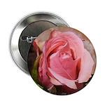 Pink Rose 2.25