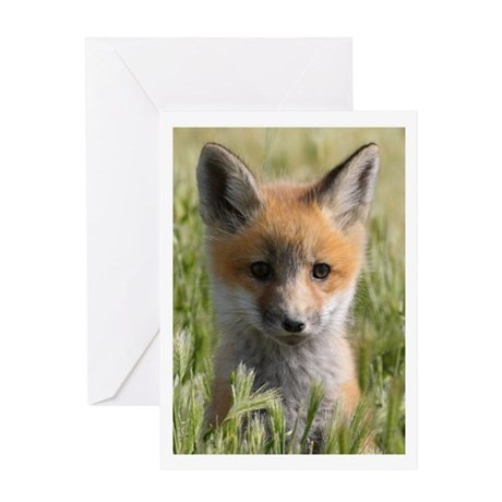 Curiosity. Greeting Card